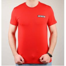 Футболка мужская Nike 1544-2 - С гарантией