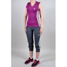 Спортивный костюм Adidas 4007-2